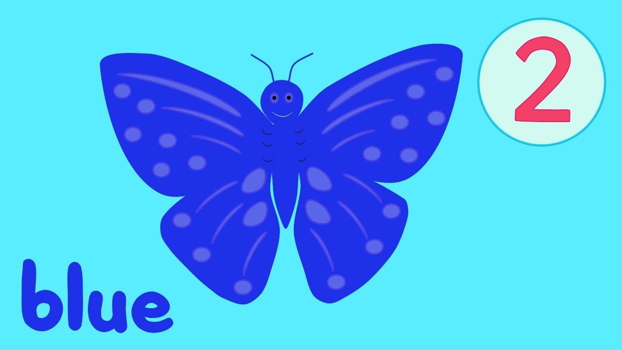 Butterfly Colors Song 2 - YouTube