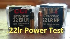 CCI .22lr Power Test #explained