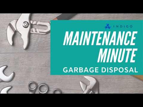 easy-garbage-disposal-tricks---indigo-maintenance-minute