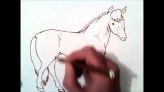hvordan å tegne en hest
