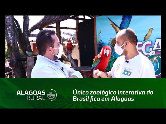 Único zoológico interativa do Brasil fica em Alagoas