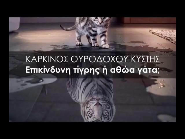 Καρκίνος ουροδόχου κύστης επικίνδυνη τίγρης ή αθώα γάτα