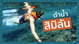 ดำน้ำ เกาะสิมิลัน-เกาะตาชัย Similan-Tachai Island Snorkeling by Gopro  [HD]