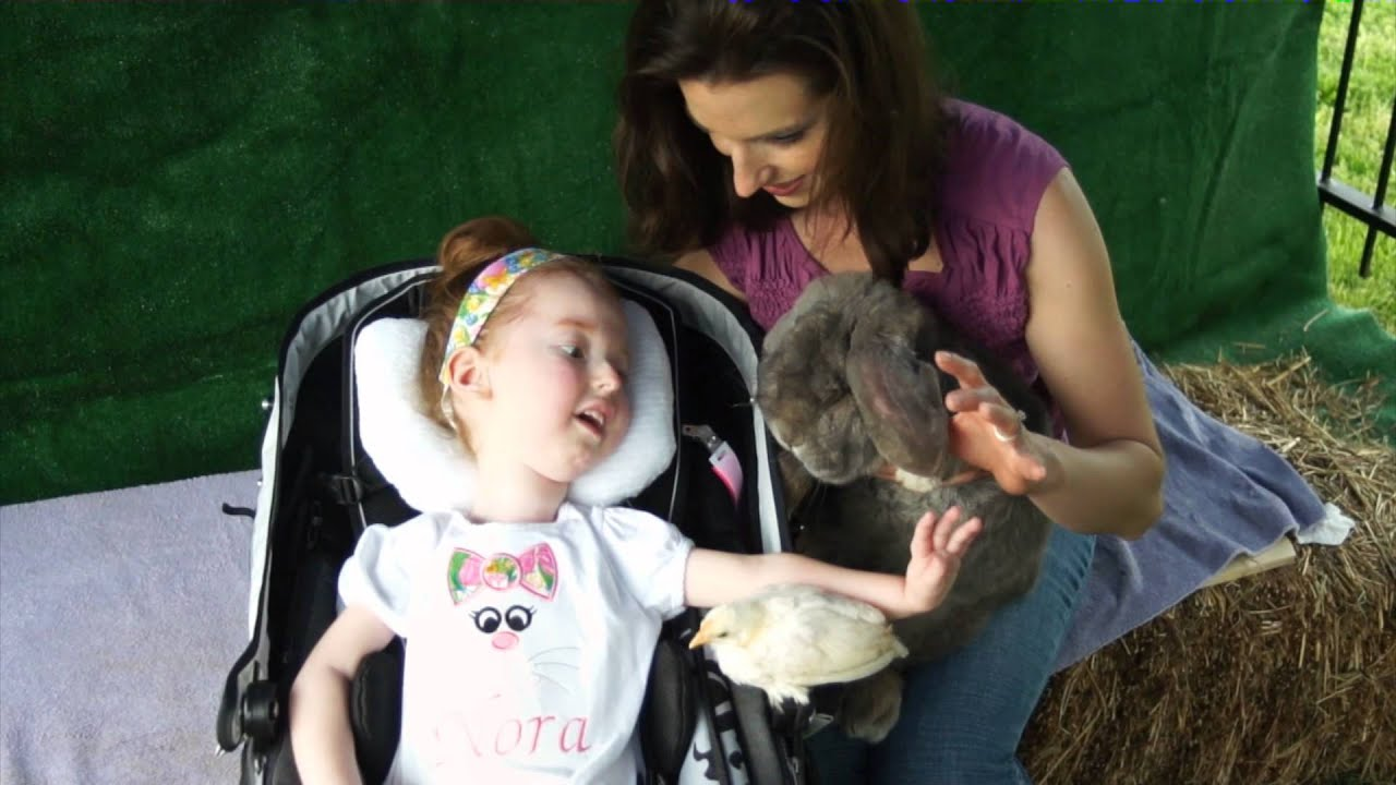 Nora Meets Some Animals 4 H Youtube