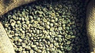 Вся правда о зеленом кофе (полный выпуск) | Говорить Україна