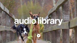Thingamajig - Audionautix | YouTube Audio Library