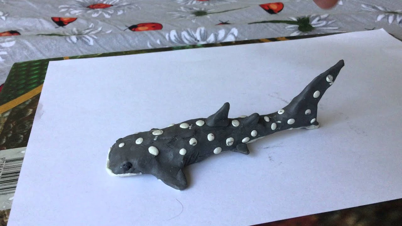 как слепить акулу из пластилина фото крови кэтрин оксенберг