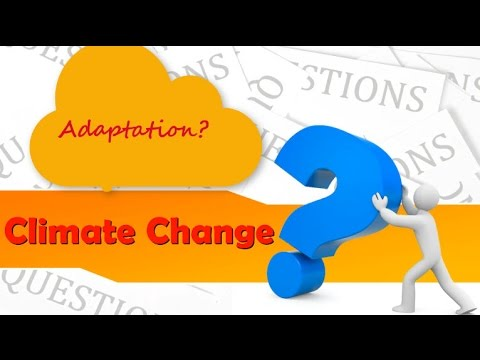 "Adaptation  and Climate Policy: How to Find the ""Right"" Information in the Climate Web"