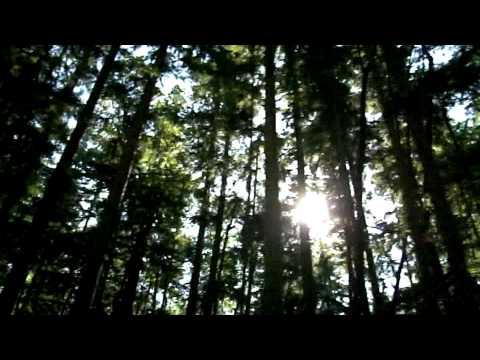 Washington State Travel  - 4 into the night  - YouTube