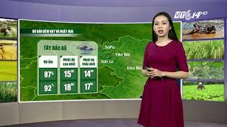 VTC14 | Thời tiết Nông vụ ngày 23/11/2017| Đêm nay Hà Tĩnh đến Phú Yên mưa to liên tục trút xuống