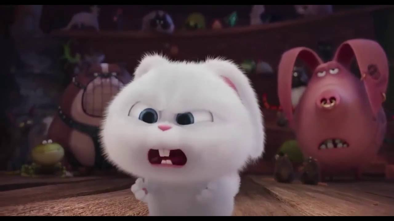 Download Best And Funny Moments Of Snowball From Secret Life Of Pets Movie | Best Funny Moments HD