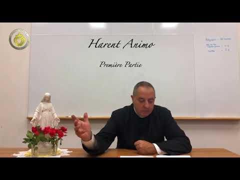 Harent Animo Première Partie