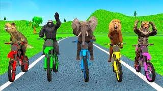 Jungle Animals Motorbike Adventure - stunt motorbike games