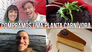 ACREDITE NOS SEUS SONHOS DE GALINHA FRITA - Alemanizando