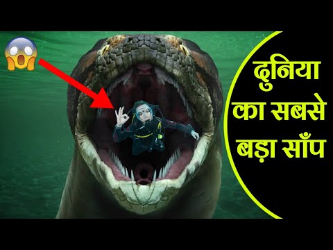 Titanoboa - जिसे माना जाता था साँपो का राजा | Worlds Biggest Snake