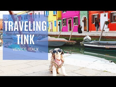#TravelingTink - NH Collection Venezia Palazzo Barocci - Venice, Italy