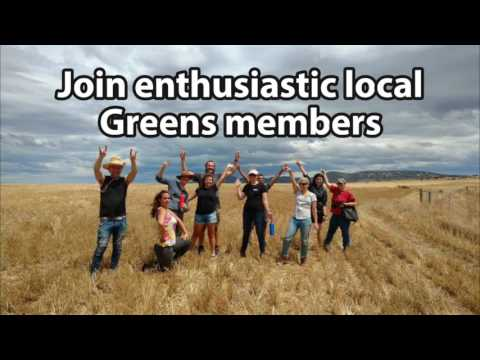 Port Phillip Greens Koala Tree Planting Day