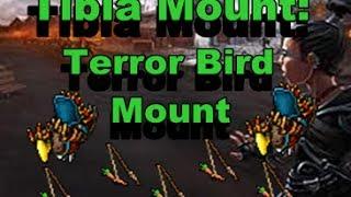 TIBIA MOUNT: Terror Bird Mount // TIBIA EN ESPAÑOL // Como Sacar Terror Bird