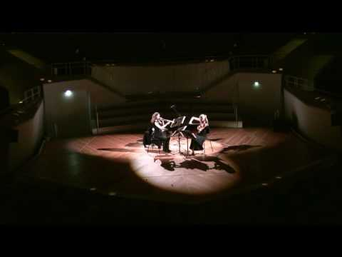 Simon Steen-Andersen - Study for String Instrument #1
