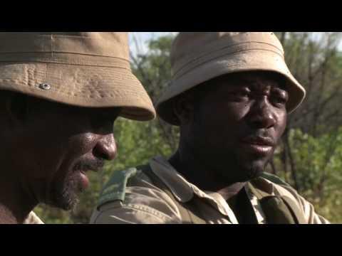 Wild Jobs Namibia S01 E02: Vulnerable Species