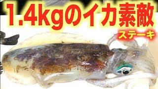 真冬に釣れた1.4kgのイカを丸々ステーキに! thumbnail
