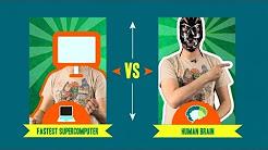 Brain vs. Computer