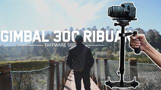 Stabilizer Steadycam Pro for Camcorder DSLR TaffStudio