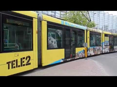 LOL Cats tram (Tele 2) Rotterdam