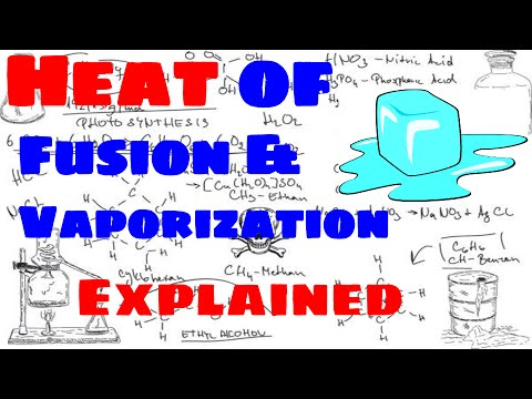 a lab experiment to calculate the specific latent heat of fusion of ice 96245-802 title of experiment: latent heat of fusion date latent heat lab 5 - course number and section number able to calculate specific heat the latent.