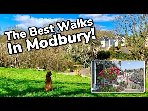 The Best Walking Routes In Historic Modbury | South Hams Devon