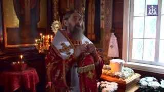 видео: Слово владыки Алексия на панихиде по митрополиту Тульскому и Белевскому Серапиону