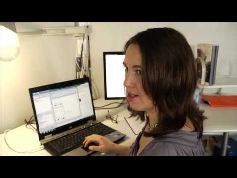 Sonya Fournier:  Business Intelligence Analyst
