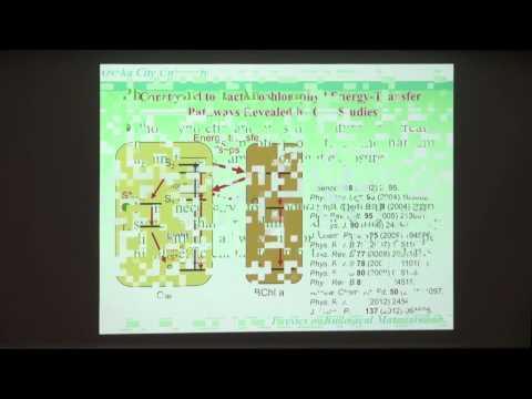 2014 10 3 I²CNER Seminar Series : Prof. Hideki Hashimoto