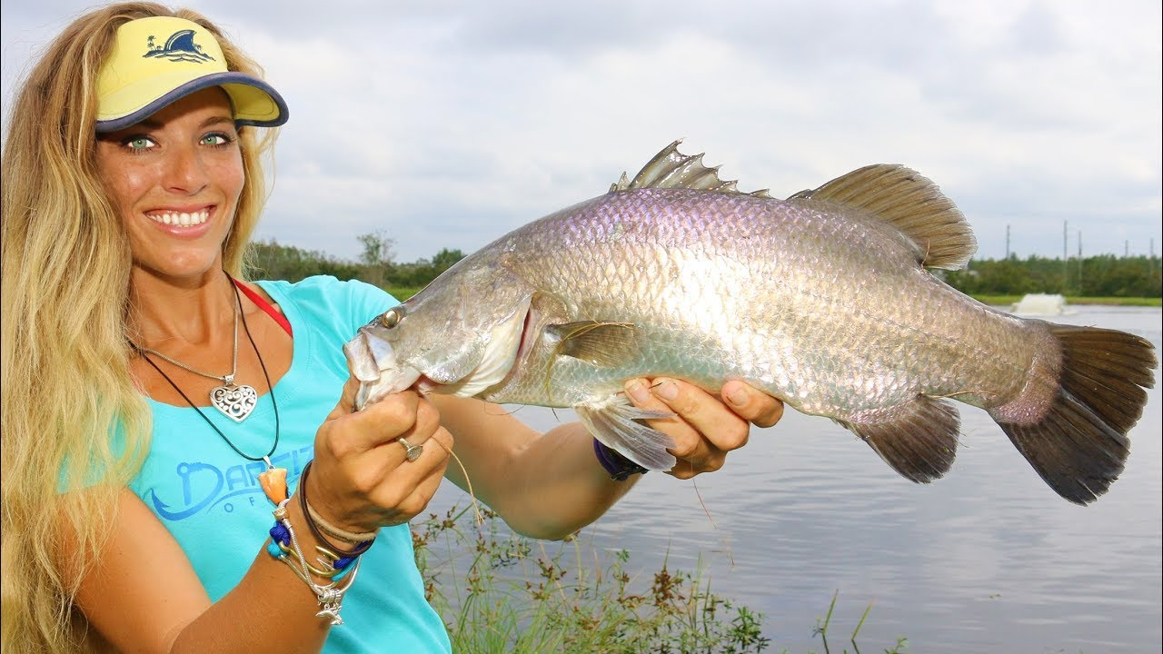 Barramundi Fishing in Florida at Osceola Outback - Fish the Pit