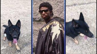 Deion Sanders Trains His Dog