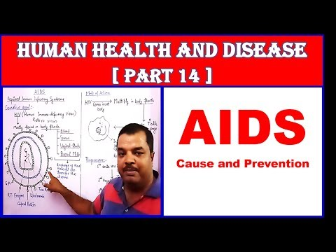AIDS causes and prevention for NEET | Human Health and Disease | NEET Bio | Part 14