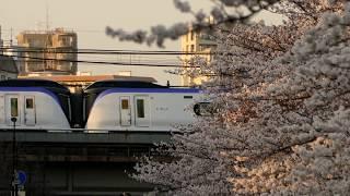 【JR東日本】瞬間ですが・・桜満開の神田川を渡るE353スーパーあずさ 東中野駅