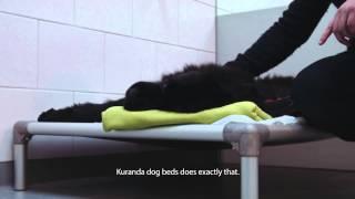 "Kuranda Dog Beds: Dr. Paul Groenestein, Animal Clinic ""de Waterpoort"""
