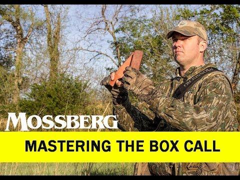 Turkey Calling: Mastering The Box Call