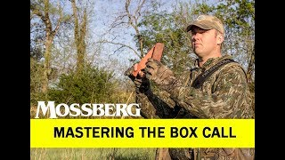 Turkey Calling: Mastering The Box Call
