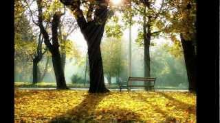 Bee Gees - Too Much Heaven HD