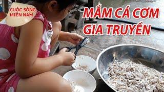 Cách làm MẮM CÁ CƠM ngon | Nam Việt