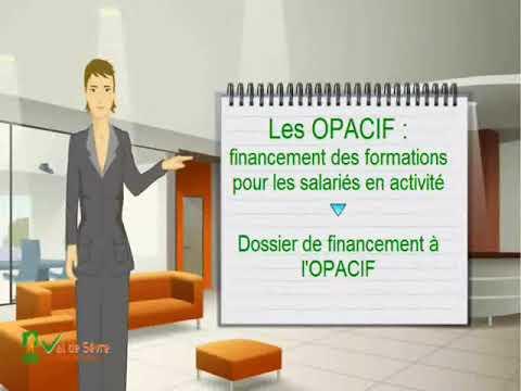 Financement de la formation adulte pour les entreprises : qu'est-ce qu'un OPCA , OPACIF, FPSPP ?