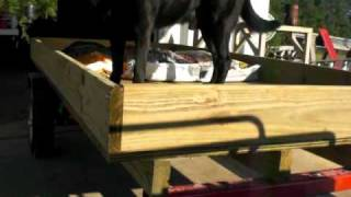 Little Harbor Freight Trailer Part 1