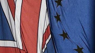İngiltere Anayasa Mahkemesi'inden parlamentosuz Brexit'e kırmızı kart