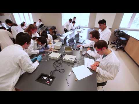 Schulich Medicine & Dentistry - Bachelor of Medical Sciences Profile