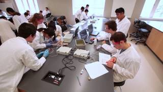 Schulich Medicine & Dentistry - Bachelor of Medical Sciences Profile thumbnail
