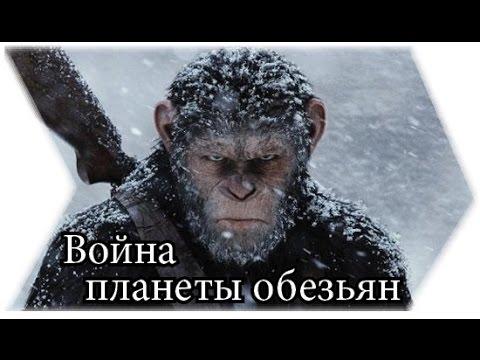 О чём будет фильм Война планеты обезьян? (СПОЙЛЕРЫ)