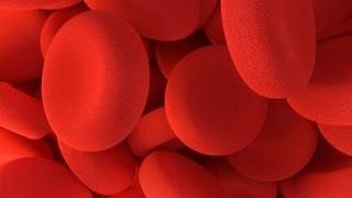 Femoral da veia coágulos sanguíneos