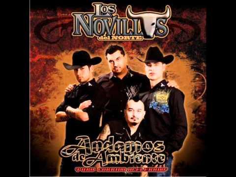 Los Novillos Del Norte - Estoy Loco Por Ti - YouTube  Los Novillos De...